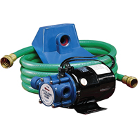 Non-Submersible, Self-Priming Plated Brass Transfer Pumps DC293 | SCN Industrial