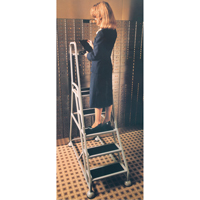 Stop & Step Ladder MD628 | SCN Industrial