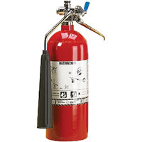 Aluminum Cylinder Carbon Dioxide (CO2) Fire Extinguishers SAL344 | SCN Industrial