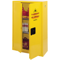 Flammable Storage Cabinet SDN647 | SCN Industrial
