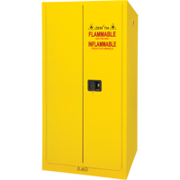 Flammable Storage Cabinet SDN648 | SCN Industrial