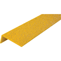 Safestep® Anti-Slip Step Edge SDN786 | SCN Industrial