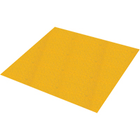 Safestep® Anti-Slip Sheet SDN807 | SCN Industrial