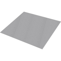 Safestep® Anti-Slip Sheet SDN811 | SCN Industrial
