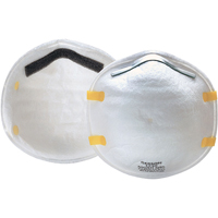 Disposable Respirator N95, 20/Box SEA543 | SCN Industrial