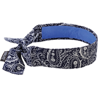 Chill-Its® 6700CT Cooling Bandanas SEI647 | SCN Industrial