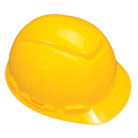 3M™ Vented Hard Hats SFU735 | SCN Industrial