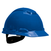 3M™ Vented Hard Hats SFU736 | SCN Industrial