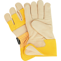 Thinsulate™ Lined Grain Cowhide Fitters Gloves SAP246 | SCN Industrial