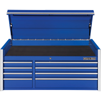 Extreme Tools® RX Series Top Tool Chest TEQ499 | SCN Industrial