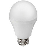 A19 LED Bulb XE481 | SCN Industrial